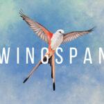 Wingspan Free PC Download