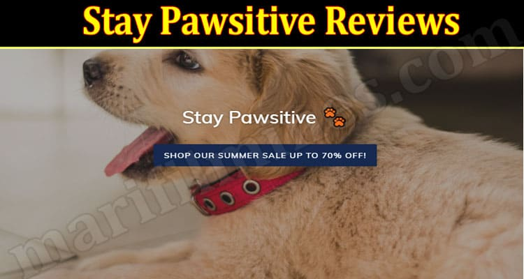 Stay Pawsitive Scam 2021 - (September) Check Authentic Reviews!
